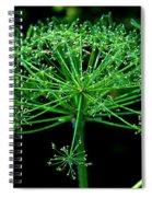 Green Frills II Spiral Notebook