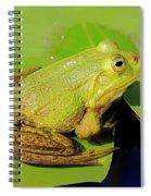 Green Frog 2 Spiral Notebook