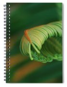 Green Frond  Abstract Spiral Notebook