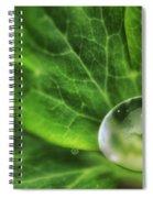 Green Globe Spiral Notebook