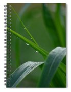 Green Grass Of Summer Spiral Notebook
