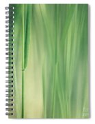 Green Grass Spiral Notebook