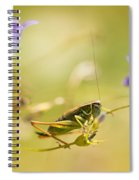 Green Grasshopper On Violet Bell Flowers Spiral Notebook