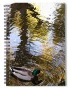 Green Head Mallard Duck Spiral Notebook
