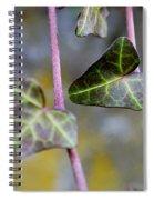 Green Hearts Beat Spiral Notebook