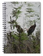 Green Heron At The Pond Spiral Notebook