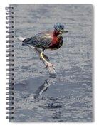 Green Heron In Swannanoa North Carolina Spiral Notebook