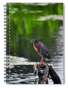 Green Heron Perch Spiral Notebook