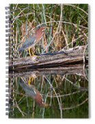 Green Heron Reflections Squared Spiral Notebook
