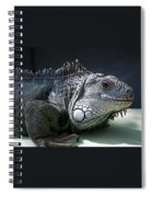 Green Iguana 1 Spiral Notebook