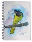 Green Jay Bird Texas Spiral Notebook