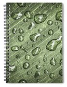 Green Leaf Abstract With Raindrops Spiral Notebook
