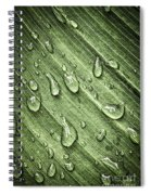Green Leaf Background With Raindrops Spiral Notebook
