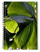 Green Leaf I Spiral Notebook