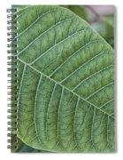 Green Leaf Macro Spiral Notebook
