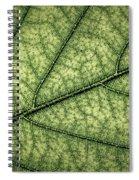 Green Leaf Texture Spiral Notebook