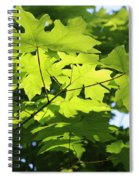 Green Leaves Canvas Spiral Notebook