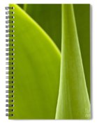 Green Leaves Series  1 Spiral Notebook