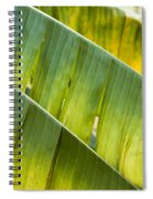 Green Leaves Series 14 Spiral Notebook