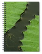 Green Leaves Series  4 Spiral Notebook
