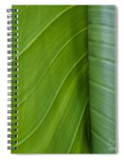Green Leaves Series  6 Spiral Notebook
