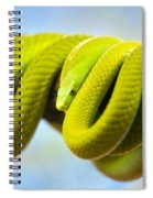 Green Mamba Coiled Up On A Branch Spiral Notebook