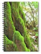 Green Moss Spiral Notebook