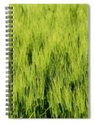 Green Nature Spiral Notebook