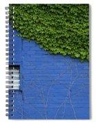 green on blue IMG 0964 Spiral Notebook