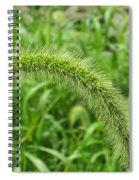 Green On Green Spiral Notebook