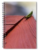 Green On Red Spiral Notebook