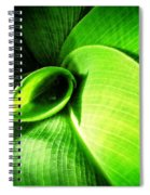 Green Paradise - Leaves By Sharon Cummings Spiral Notebook