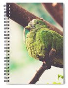 Green Pigeon Spiral Notebook