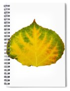 Green Red And Yellow Aspen Leaf 2 Spiral Notebook