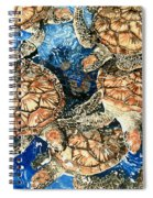 Green Sea Turtles Spiral Notebook