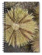 Green Sea Urchins Spiral Notebook