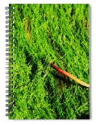 Green - Seaside Abstract Spiral Notebook