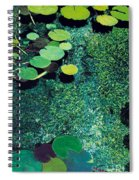 Green Shimmering Pond Spiral Notebook