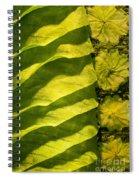 Green Silk 02 Spiral Notebook