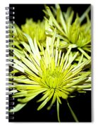 Green Spider Mums Spiral Notebook