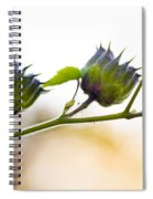 Green Spiky Wild Flowers Spiral Notebook