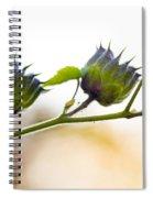 Green Spiky Wild Flowers Spiral Notebook