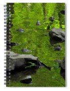 Green Stream Spiral Notebook