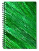 Green Streaming Spiral Notebook