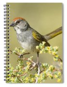Green-tailed Towhee Spiral Notebook