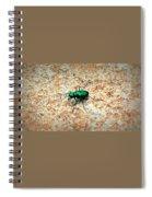 Green Tiger Beetle Spiral Notebook