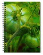Green Tomatos Spiral Notebook