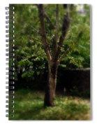 Green Tree In Park Spiral Notebook