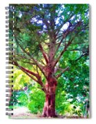 Green Tree Spiral Notebook