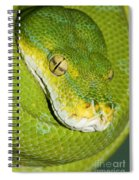 Green Tree Python #2 Spiral Notebook
